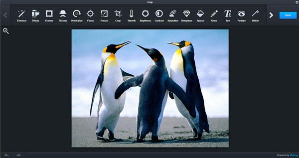 programma online per modificare foto da stampare